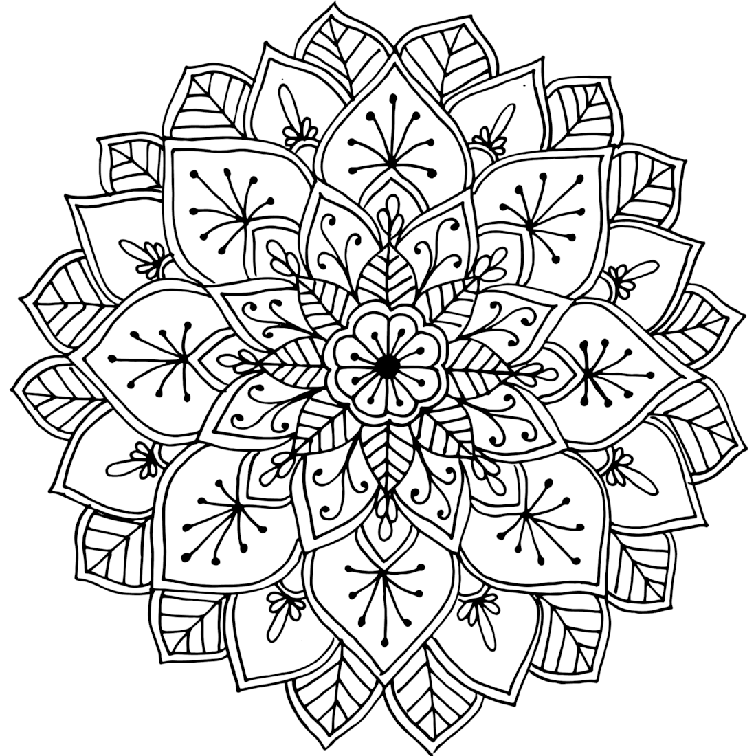 Picture of Hopetoun coloring page
